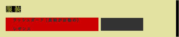服装 ラッシュガード(長袖がお勧め) 水着(サーフパンツ) レギンス サンダル